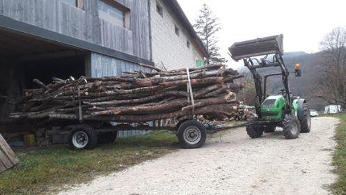 transport des grumes