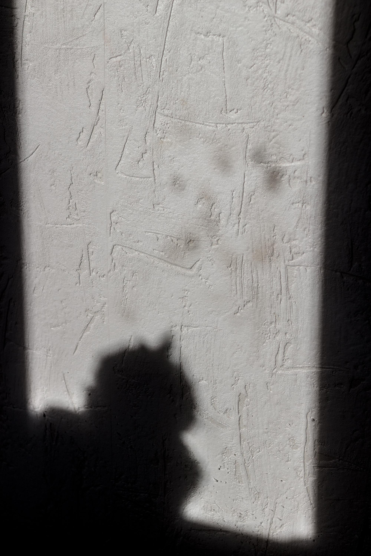 L'ombre du chat sur la fenêtre