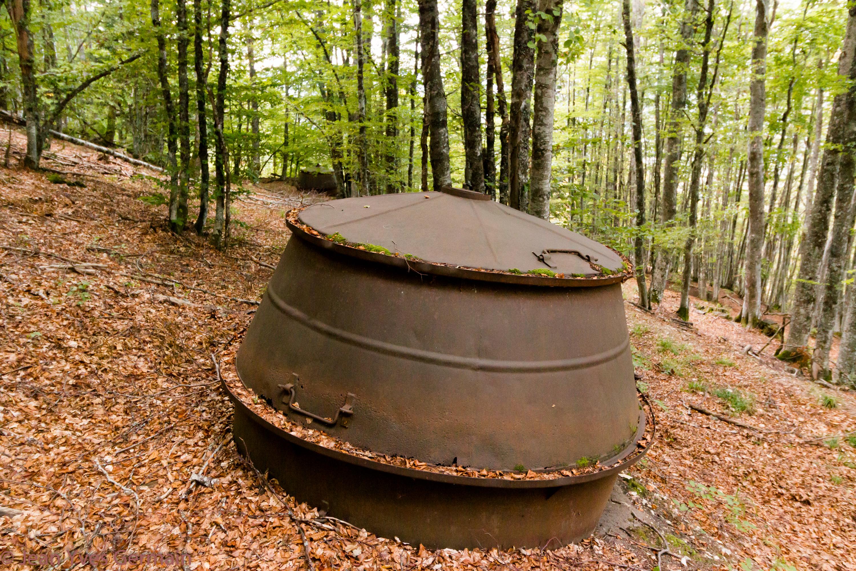 charbonnière Vassieux-6113