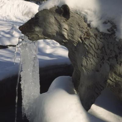 Fontaine aux ours la Ch en Vrs0630