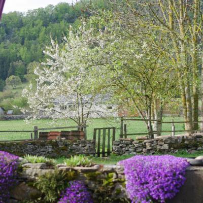 printemps aux Finets