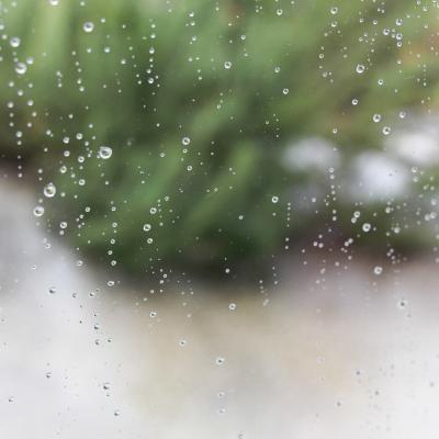 à ma fenêtre