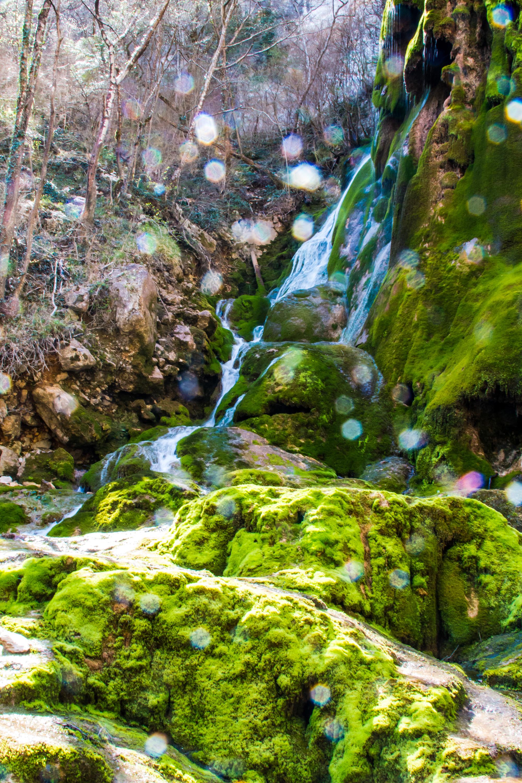 cascade vert en contre jour