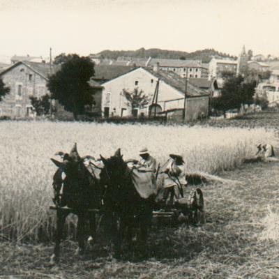 La Chapelle en Vercors Travaux aux champs