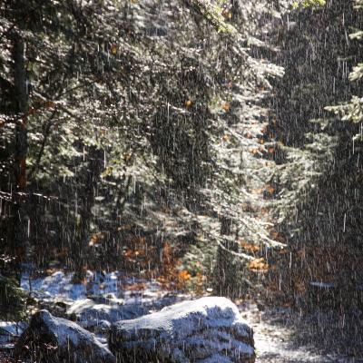 pluie sur neige